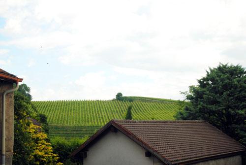 Lo que hay que visitar en Lausanne