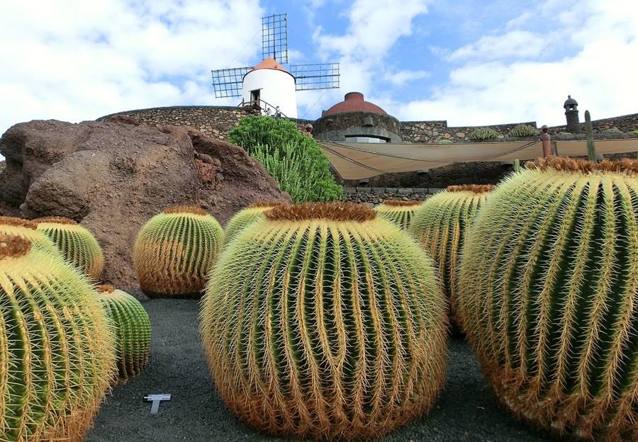 Planes alternativos que hacer en Lanzarote