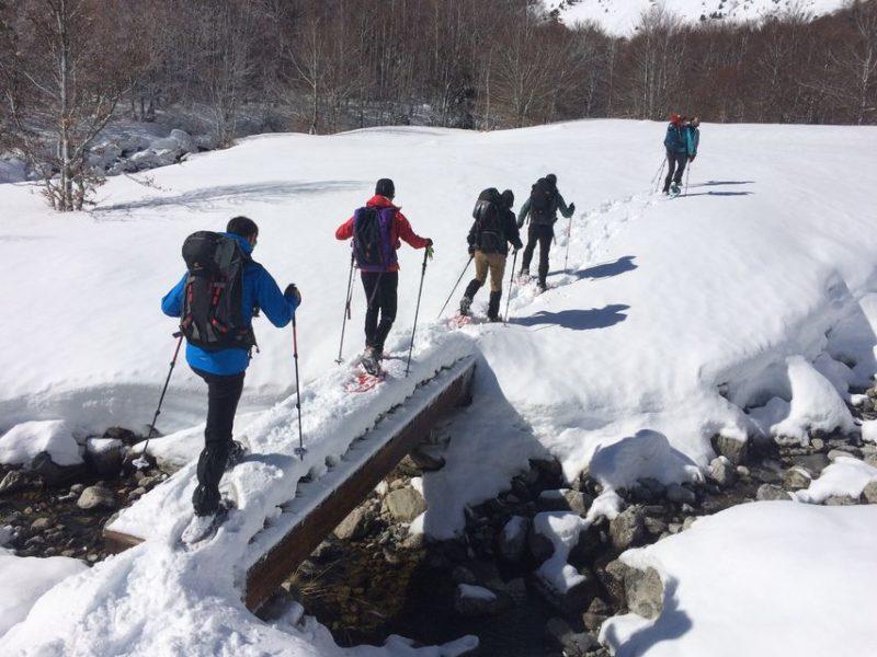 Fila de personas caminando en la nieve con raquetas.