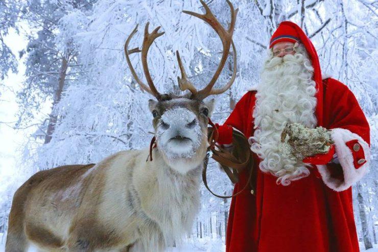 Cómo ver a Santa Claus en Finlandia - Santa con un reno.