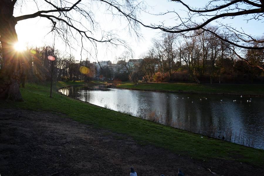 Pequeño lago en un parque en la ciudad de Amberes.