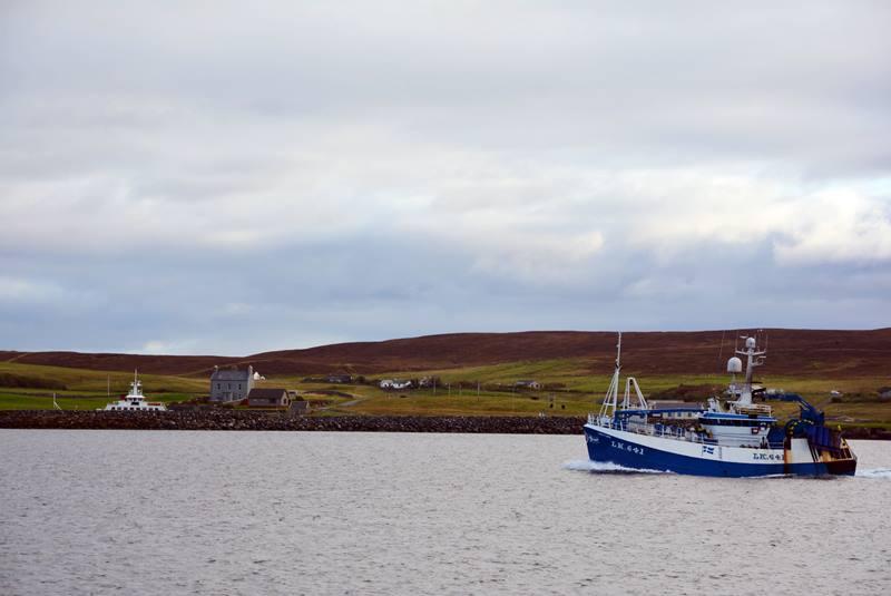 Barco pesquero cruzando frente a las costas de Lerwick.