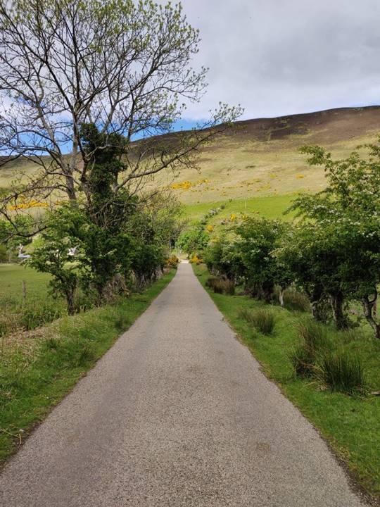 Camino estrecho frente a una colina.