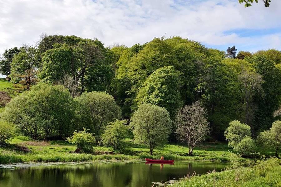 Un señor en un bote en un canal rodeado de árboles muy verdes.